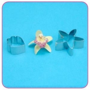 Cutter - Cymbidium Orchid Small