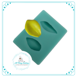 Silicone Mould - Succulent