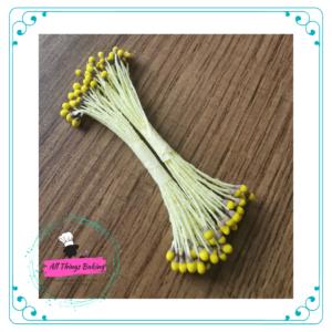 Hibuscus Stamen Yellow/Brown